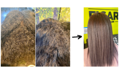 How does the Kerasilk treatment work? – a case study